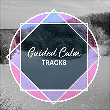 Guided Calm Tracks