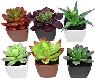 Toy Succulents Unique Succulent Artificial Potted House Indoor Bulk Garden Mini Small Planter Plant Aloe Cactus (Collection of 4)