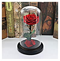 枯れない花 ガラスドームでの1個の自然永遠の命バラバレンタインデーのギフトのための実ローズプリザーブドフラワー木製ベースに JFYJP (Color : レッド, Size : 15X18CM)