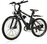 "VIVI 26""Elektro-Mountainbike 250W Elektrofahrrad 36V 8Ah Abnehmbare Batterie E-Bike 32KM/H 21 Gangschaltung Erwachsene E-Bike(schwarz)"