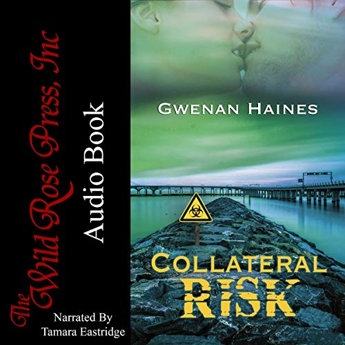 Collateral Risk audiobook cover art
