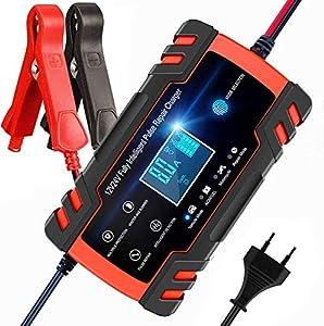 BUDDYGO Cargador de Batería, Cargador de Bateria Coche Moto 12V/24V Full Automático Inteligente Mantenimiento de Batería con Pantalla LCD y Múltiples Protecciones para Automóviles, Motos