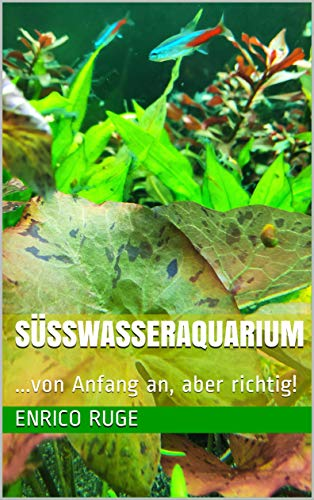 Süsswasseraquarium: ...von Anfang an, aber richtig!