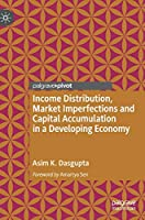 Income Distribution, Market Imperfections and Capital Accumulation in a Developing Economy