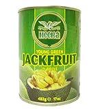 Heera - Jeune fruit de jacquier dans de l'eau salée - lot de 2 boîtes de 482 g