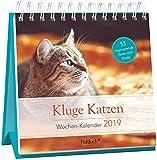 Kluge Katzen - Wochen-Kalender 2019: zum Aufstellen m. Fotos u. Zitaten, inspirierende Texte auf d. Rückseiten, Spiralbindung, 16,6 x 15,8 cm