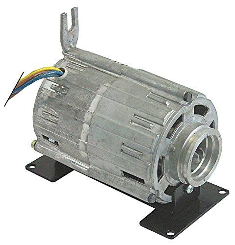 RPM C004320 Pumpenmotor für Kaffeemaschine Nuova Simonelli MAC2000, Appia-2GR, Master1, Premier mit Kondensator 6µF 120W 230V 6 µF