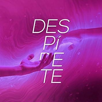 Despídete (feat. Sofía Stainer, Daniel Lo Presti, Esteban Nañez, Panasuyo, Ernie James, Javo Muñoz, La Garfield, International Dub Ambassadors, Juglares y Locos & Boats)