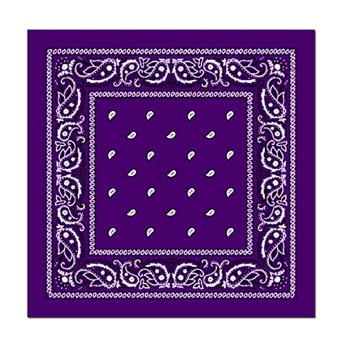 L&M 12Pcs Bandanas 100% Cotton Paisley Print Head Wrap Scarf...