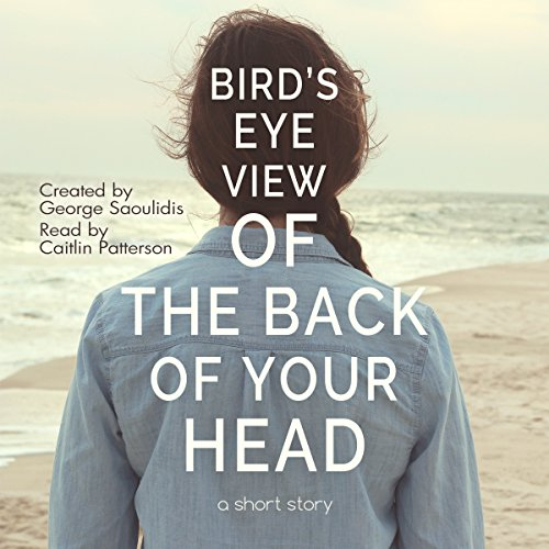 Bird's-Eye View of the Back of Your Head audiobook cover art