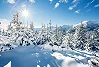 HD 7x5ft雪に覆われた木の背景冬の晴れた日雪に覆われた風景写真の背景日光の森松もみアルプス山雪原クリスマスホリデー新年スタジオビニールの小道具