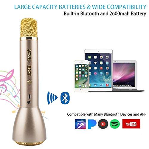 Tragbares Mikrofon Bluetooth Drahtloses, Karaoke Mikrofon Bluetooth Lautsprecher, Mikrofon Lautsprecher Kinder, Wireless Microphone Karaoke Mic für Smartphones IOS iPhone, iPod, iPad, Android Party - 2