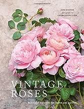 Best book of roses Reviews