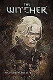 The Witcher Vol. 5 - Ricordi Sbiaditi - 100% Panini Comics - ITALIANO