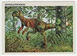 Hypsilophodon - Dinosaurs: The Mesozoic Era (Trading Card) # 14 - Redstone Marketing 1993 Mint