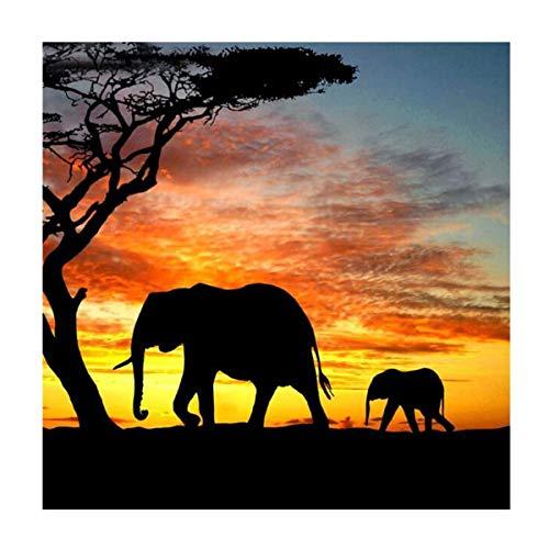 MXJSUA 5D DIY Diamant Malen nach Zahlen Kit Fulll Runde Dril Perlen Kristall Strass Bild Liefert Kunsthandwerk Wandaufkleber Dekor Elefant in der Wüste 30x30 cm