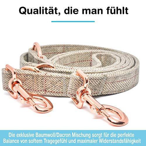 Freudentier Hundeleine (2m) + Hundehalsband im Set | Außergewöhnlich Elegant & Verstellbar - 3