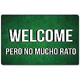 Welcome Mat,Alfombra De Piso De Entrada Alfombra De Puerta Divertida Alfombra De Bienvenida Bienvenido Pero No Mucho Rato Alfombrilla De Puerta Alfombrilla Antideslizante Alfombra De Tela No Teji