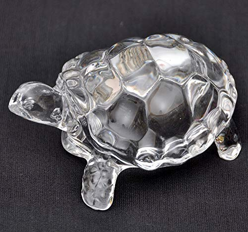 Top tortoise gifts for women for 2021