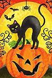 Texupday Scary Pumpkins with Black Cat Bats Decoration Halloween Garden Flag Outdoor Yard Flag 12' x 18'