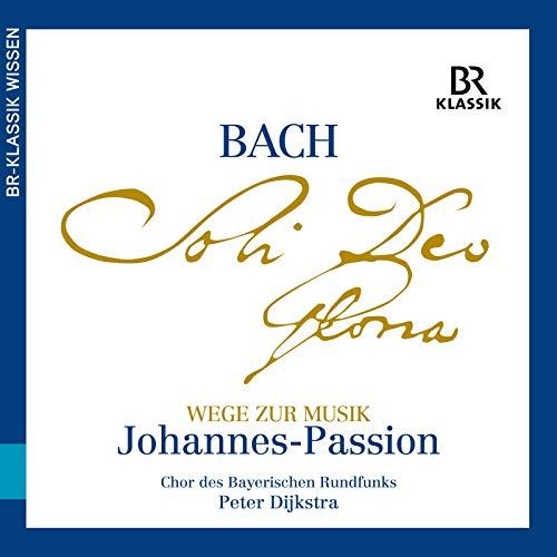 Wege zur Musik aus der Johannes-Passion, Teil 3