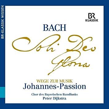 Wege zur Musik: Johannes-Passion