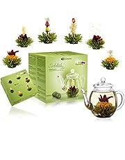 Creano Theebloemen Mix - cadeauset met glazen kan groene thee fruitig gearomatiseerd (eerozen in 6 soorten), bloeiende thee, thee-cadeau voor vrouwen, moeder, theeliefhebbers