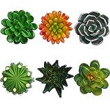 6 Pieces 3D Resin Succulent Fridge Magnets...