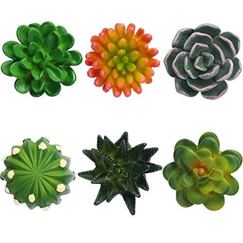 6 Pieces 3D Resin Succulent Fridge Magnets Green Plants Fridge Magnets Succulent Magnets for House Office Personal Use