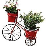 Puesto de Flores,Soporte de Flor Flower Rack Plant Stand Indoor, Garden Creative Bike Bonsai Display Shelf, Rack De Almacenamiento De Hierro Forjado Retro Rústico ( Color : Red , Size : 56*25*51cm )