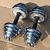 Rhegeneshop Adjustable Cast Iron Gym Strength Weight Dumbbells Set Pair Total 22-110 Lbs