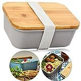 bambuswald© ökologische Aufbewahrungsbox mit Deckel aus 100% umweltfreundlichen Bambus & Gummiband Verschluss   Lunchbox in 4x Größen - Brotdose Brotbox Transportbox Behälter Box Dose Vorratsdose