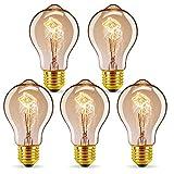 GreenSun Ampoule LED Edison,E27 40W A19 Edison Rétro Lampe Antique Vintage Incandescence Ampoules Poire à cage d'écureuil Filament Ampoule LED Vintage Lampe Décorative,5pack