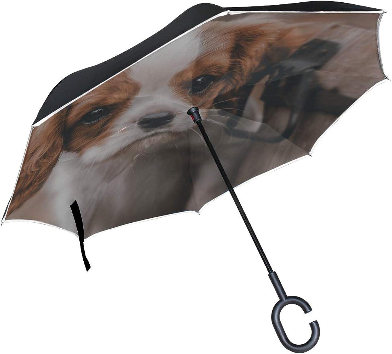 Rh Studio Ingreened Umbrella Dog Puppy Look Bucket Large Double Layer Outdoor Rain Sun Car Reversible Umbrella