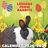 Lessons From Rabbits Calendar 2020 - 2021: April 2020 - April 2021 With Rabbit Inspirational Quotes