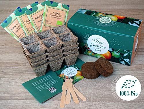 Mini Gemüse Anzuchtset - 4 Sorten Bio Balkon Gemüse Samen. Perfektes Gemüseset für Topf, Fensterbank und Balkon. Geschenk für Kinder und Familie