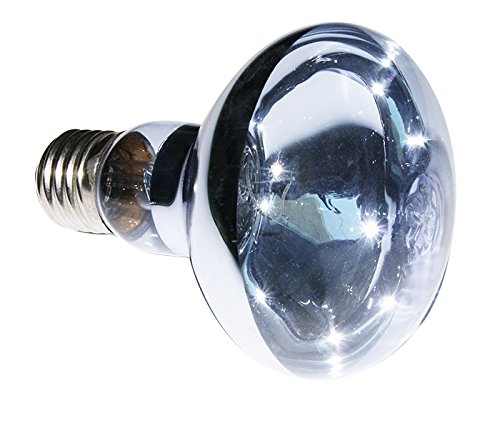 Reptizoo lamp Daylight, 100 W B80100