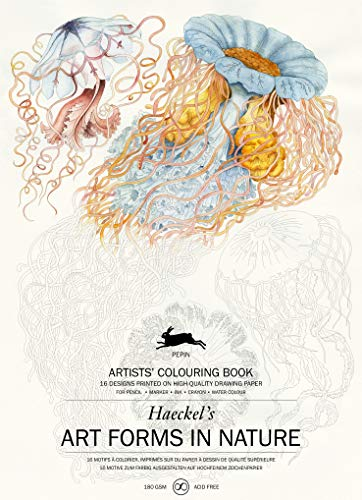 Art Forms in Nature: Artists' Colouring Book