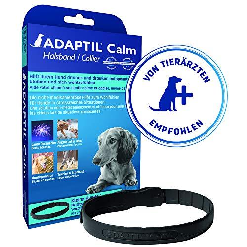 bester der welt ADAPTIL Ruhiges Halsband, für kleine Hunde, maximaler Halsumfang.  37,5 cm 2021
