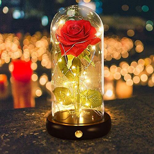 shirylzee Die Schöne und das Biest Rose, Ewige Rose und LED-Licht unter Glaskuppel Künstlich Rose auf Holzsockel für Hochzeit Dekor Jubiläum Weihnachten Muttertag Hochzeitsgeschenk (Rot)