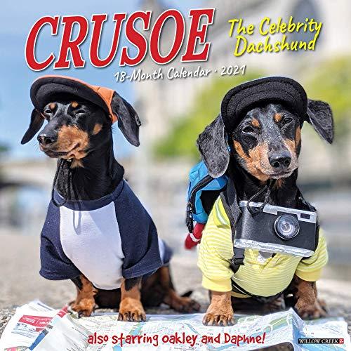 Crusoe the Celebrity Dachshund 2021 Wall Calendar (Dog Breed Calendar)