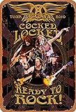 No/Brand Aerosmith Cocked Locked Ready to Rock Tour 2010