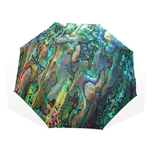 LASINSU Regenschirm,Haliotis von Muschel Makrofoto unglaublicher Natur Nahaufnahme einzigartigem Küstendetail,Faltbar Kompakt Sonnenschirm UV Schutz Winddicht Regenschirm