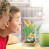 Fish wonder 0 Aquarium autonettoyant, Pierre, Verre, auc