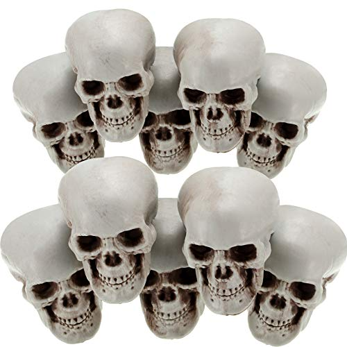 Halloween Skulls Human Skeleton Head Skull Head Realistic Skeleton Skulls for Halloween Home Table Decor (10, Mini)