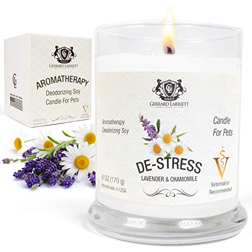 Lavender & Chamomile Aromatherapy Deodorizing Soy Candle for Pets, Pet Odor Eliminator & Animal Lover Gift - 6 OZ (170 g)