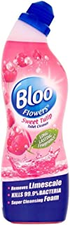 Bloo Toilet Cleaner Limited Edition (750ml) - Pack of 2