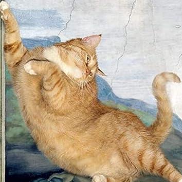 pez gato