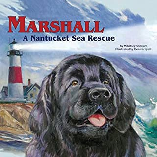 Marshall: A Nantucket Sea Rescue audiobook cover art