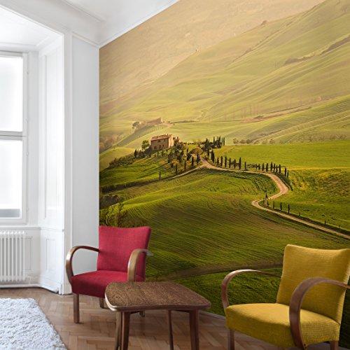 Apalis Vliestapete Chianti Toskana Fototapete Quadrat | Vlies Tapete Wandtapete Wandbild Foto 3D Fototapete für Schlafzimmer Wohnzimmer Küche | Größe: 240x240 cm, grün, 95275